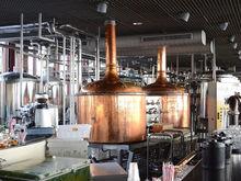 «Удар по малому легальному бизнесу». Как отразится на ИП запрет розничной торговли пивом