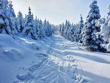 В Нижнем Новгороде в выходные 20-21 января похолодает