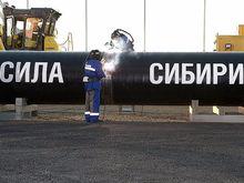 Просто подали документы. Томская микрокомпания получила контракты «Газпрома» на 8 млрд