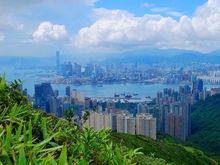 Гонконг растет, Сидней дорожает. Рейтинг городов с самым дорогим и доступным жильем