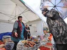 Фермеры раскритиковали организацию сельхозярмарок в Казани