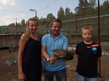 «Так поступают только нацисты». В окрестностях Екатеринбурга замерзает уникальная ферма