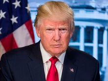 «Работать нужно, как Трамп!» — чем восхищает новый президент США