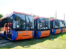 В Татарстане топ-менеджер украл у владельца фирмы автобусы на 32 млн рублей