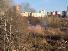 Пожароопасный период в Ростовской области наступил раньше срока