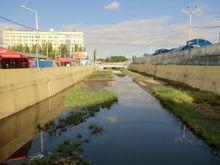 По результатам исследований река Темерник признана высокотоксичной