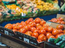 Новосибирский гипермаркет Forma превратится в оптово-розничный распредцентр продуктов