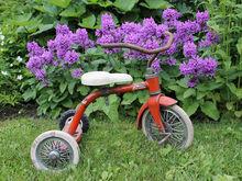 В Челябинске совместно с бизнесменами Чехии планируют производить велосипеды