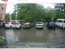 Регистратор ростовчанина зафиксировал момент падения дерева на автобусную остановку