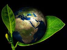 Власти призывают новосибирские предприятия к экологической ответственности