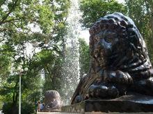 Стали известны места, которые благоустроят в Ростове