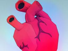 Новосибирская компания готовится к строительству производства сердечных клапанов