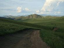 «Дорога, дорога...». Новосибирские бизнесмены назвали места, куда отправятся этим летом