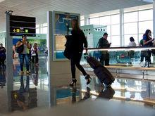 «Фактически билеты подорожают». Почему Совфед выступил против безбагажных тарифов