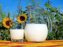 Молочный завод на Южном Урале продают за 38 млн руб.
