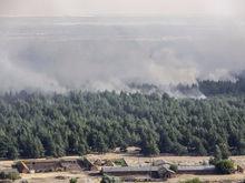 В Ростовской области пожар затронул территорию площадью 4,8 тыс га