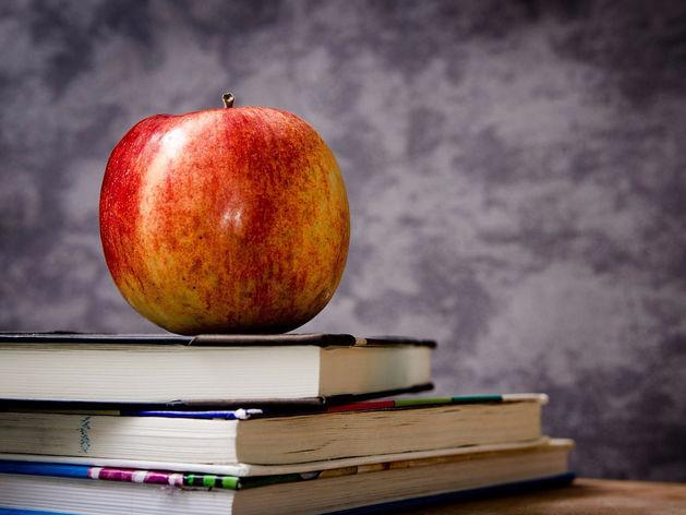Ищите свою. 12 школ Екатеринбурга — в списке лучших учебных заведений страны