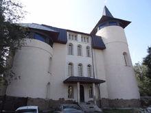 В центре Челябинска за 60 млн. продается необычное здание в форме замка