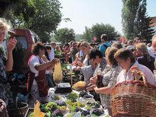 """Фестиваль """"Донская лоза"""" стал самым популярным винным фестивалем осени в России"""