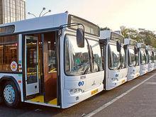 Стали известны марки новых автобусов, которые доставят в Ростов в 2018 году