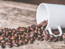 Для новосибирских Traveler's Coffee придумали новое название