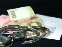 В Челябинске будут судить директоров-мошенников «Здоровой фермы»