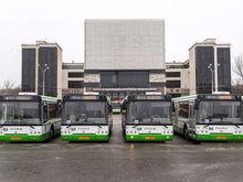 УФАС отменило итоги аукциона по поставке в Ростов 100 новых автобусов