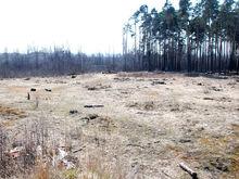 Нижегородское правительство направило второй иск к застройщику ТРК в Дзержинске