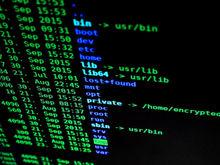 Спасите ваши деньги: пять правил защиты компании от кибератак