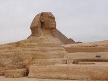 Путин открыл Египет, но туроператоры недовольны