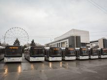 Подмосковная компания все же поставит автобусы в Ростов
