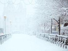 Мороз как повод для пиара: красноярский бизнес использует холода для продвижения