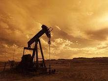 «Торговая федерация» требует признать «Ванкорнефть» банкротом