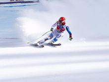 В зимней Олимпиаде в Пхенчхане будут участвовать 20 спортсменов из Красноярского края