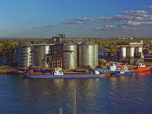 """Компания """"Астон"""" не хочет проводить экологическую экспертизу портового терминала в Ростове"""