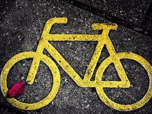 Доставка — от 150 руб. В Екатеринбурге запустили сервис велокурьеров