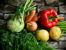 В Красноярске разработали проект для выращивания безопасных овощей