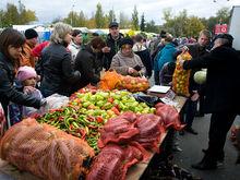 Власти Ростова определились с местами под ярмарки в 2018 году
