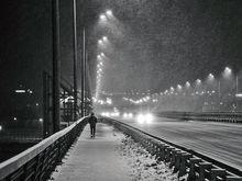 Опять метель: В Ростове прогнозируют сильный снег