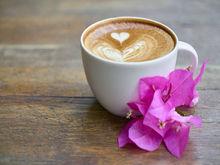 В Челябинске сеть кальянных открывает первую кофейню