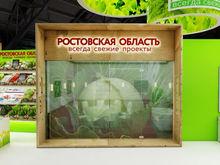 Ростовская область на форуме в Сочи представит проекты на 710 млрд рублей