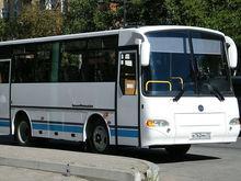 Муниципальное пассажирское предприятие Красноярска требуют признать банкротом