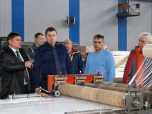Сосновоборскому заводу предложили производить продукцию для Русала