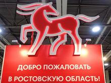 «Не думайте о красном коне»: В Ростовской области появился туристический бренд