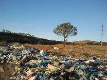 Компания из Волгограда пожаловалась на «мусорного» оператора в Челябинской области