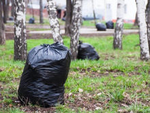 Встал поутру — приведи в порядок планету: в Красноярске стартовала акция #чисточеллендж