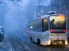 Оператору электротранспорта в Ростове дали 177,5 млн рублей для покрытия долгов