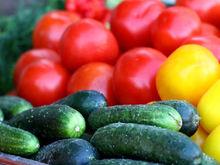 Агрокомплекс «Чурилово» застраховал овощи на 340 млн рублей