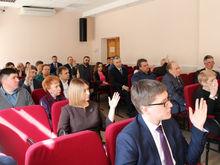 Зоозащитник, бизнесмен, дизайнер: кто вошел в состав Общественной палаты Южного Урала