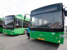 И снова транспортная реформа! Власти Екатеринбурга опять готовят рисковый проект